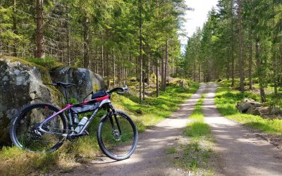 Gravelbike: ett cykeläventyr genom Blekinge, Småland & Skåne