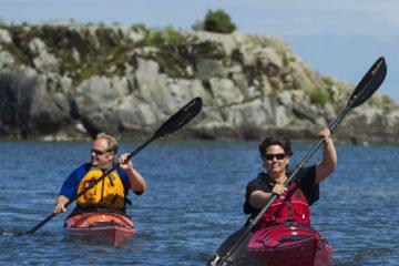Sveriges 16 bästa campingplatser 2021 - Kronocamping Swecamp Lidköping